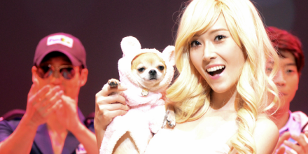 121130 Jessica Legally Blonde Musical